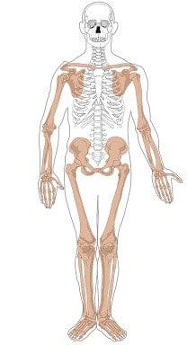 Tłumaczenia z zakresu chirurgii i ortopedii