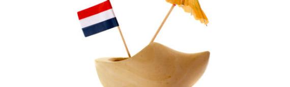 Język holenderski czy niderlandzki?