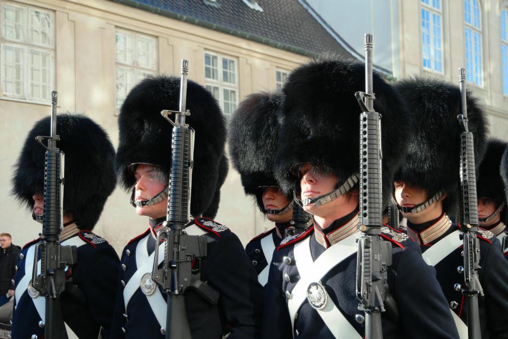Dania wojsko