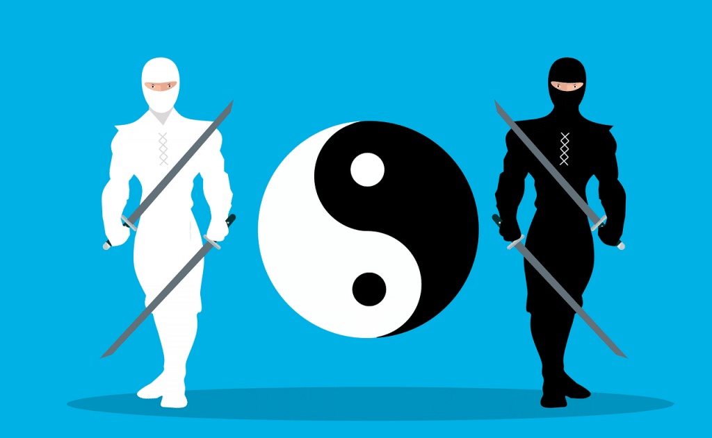 Japonia - samuraj ninja